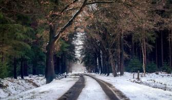 2020 - 2021 Yılı Kış Lastiği Takma Zorunluluğu